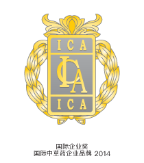 International Corporate Award International Brand 2014 logo